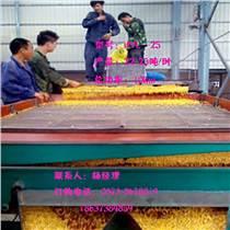 瓜子篩選機-葵花籽分選機
