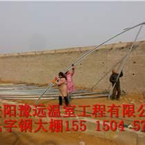 洛陽新型幾字鋼溫室建造