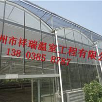 陕西大棚建造智能温室建造技术