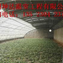 焦作花卉溫室建設成本
