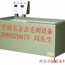 供應金屬產品制件專用電動磁力拋光機