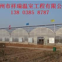 新型骨架大棚建造费用许昌连栋温室建造价格