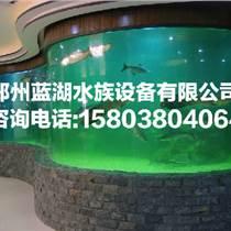 開封觀賞魚缸制造商