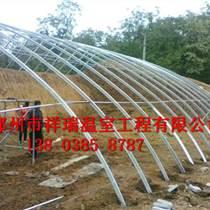 沧州土坑温室大棚整体设计方案