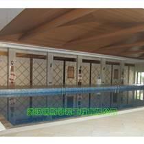 恒溫游泳池工程