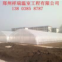 洛阳专业花卉温室大棚建造技术