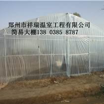 供应郑州大棚温室建造哪家好