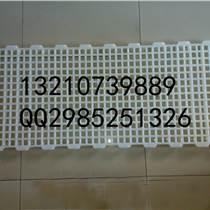 廠家批發家禽用塑料網床雞鴨鵝用漏糞網漏糞板