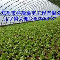 開封蔬菜大棚建造安裝公司祥瑞
