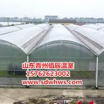 花卉薄膜拱形溫室