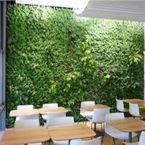 新乡 许昌绿体墙设计公司哪家好