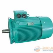 江西三相异步电动机生产厂家