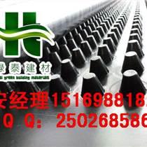 淄博地下室塑料排水板青岛屋顶绿化排水板