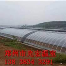 信陽幾字鋼溫室專業建造團隊