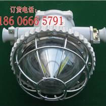 LED巷道燈DGS10/127L(A)