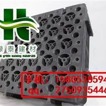 隔根刺(阜陽地下室排水板)蓄排水板廠家