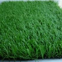 北京塑料草坪仿真草坪批發