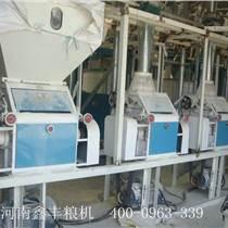 玉米深加工机械-玉米糁加工设备-玉米制糁机