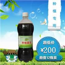 琿春市哪里有賣種植人參用的em菌種?