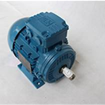 無錫WEG三相變頻電機國標進口高效電動機