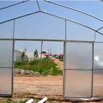 花卉拱棚建造種類黃山西紅柿溫室建造報價