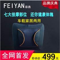 哈尔滨菲燕品牌电动车载家居养生按摩抱枕FY-101-6