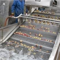 供應蔬菜清洗機價格,氣泡蔬菜清洗機,毛輥清洗設備