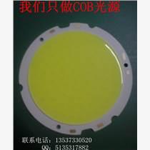 高光效 COB光源 筒灯COB光源 爱鸿阳照明专业做COB光源