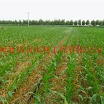 農業機械|隰縣大田滴灌帶