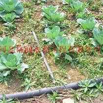 应用广泛|临猗县滴灌厂家塑料滴水带