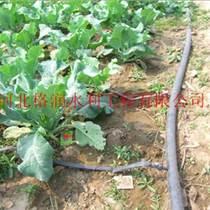 大棚滴灌带|通辽市节水设备