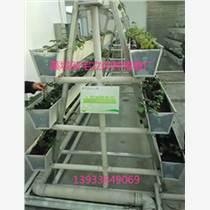 立体无土栽培槽基质槽草莓种植槽