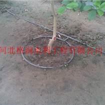平原果樹滴灌|仁壽縣農業機械
