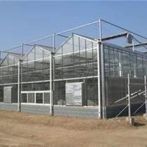承建沈陽市蔬菜大棚、育苗室、花卉大棚、溫室大棚