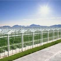 承建鞍山市蔬菜大棚、育苗室、花卉大棚、溫室大棚