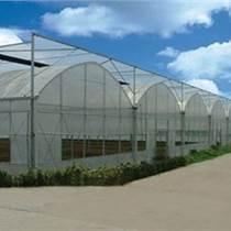 承建大連市蔬菜大棚、花卉大棚、育苗室