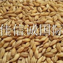 佳信誠常年出售進口大麥,適用豬,雞鴨,廠家價格