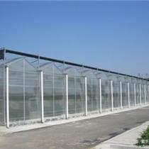 承建奈曼旗蔬菜大棚、育苗室、花卉大棚、溫室大棚