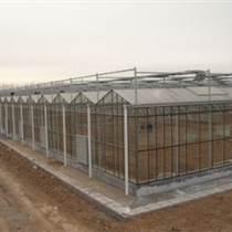 承建敖漢旗蔬菜大棚、育苗室、花卉大棚、溫室大棚