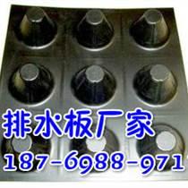 山東塑料蓄排水板_生產廠家