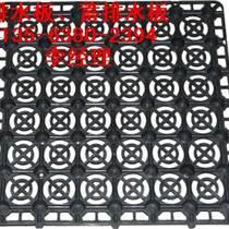 疏水板厚度:鄭州綠化疏水板施工圖【耐高壓不變形】