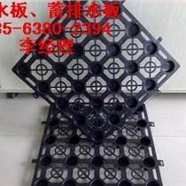 方塊蓄排水板/蓄排水板尺寸/吉林屋頂綠化蓄排水板廠家