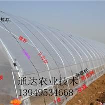 邯鄲連體大棚建造 蔬菜花卉大棚 哪里有建養殖大棚