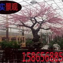 合肥生态园假树