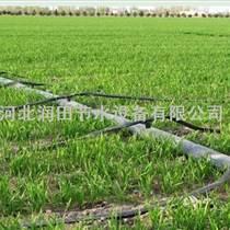 寶雞市大蔥灌溉滴灌帶|滴灌廠家