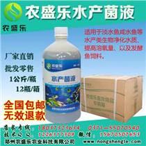 石景山區養泥鰍的水產EM菌專用原液多少錢