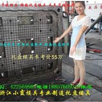 臺州專做塑料模具 1.3米塑料雙面托盤模具 1.3米塑膠托盤模具廠家