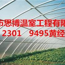 鄭州思博蔬菜大棚建一個春秋溫室大棚多少錢哪家專業