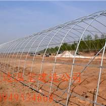 花卉拱棚建造成本葡萄大棚建設寬度
