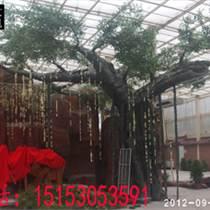 潍坊生态园假树
